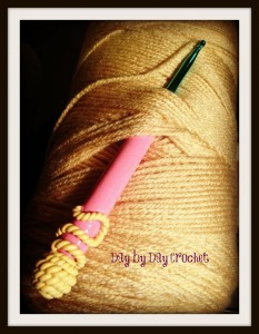 Day by Day Crochet Hook